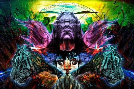 shows how is it to have an expansion of consciousness